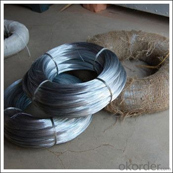 Galvanized Welded Wire Mesh with High Quality Factory Lower Price