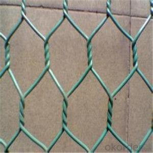 Hexagonal Wire Mesh Galvanized /PVC Coated Good Quality Best Seller Fence