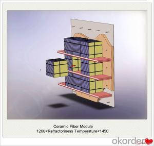 Ceramic Fiber Module Supplier and Ceramic Fiber Blanket, Cloth, Textiles