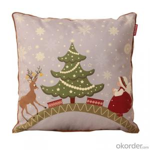 Super Pillow Cushion with Cheap Price for Christmas Decorative