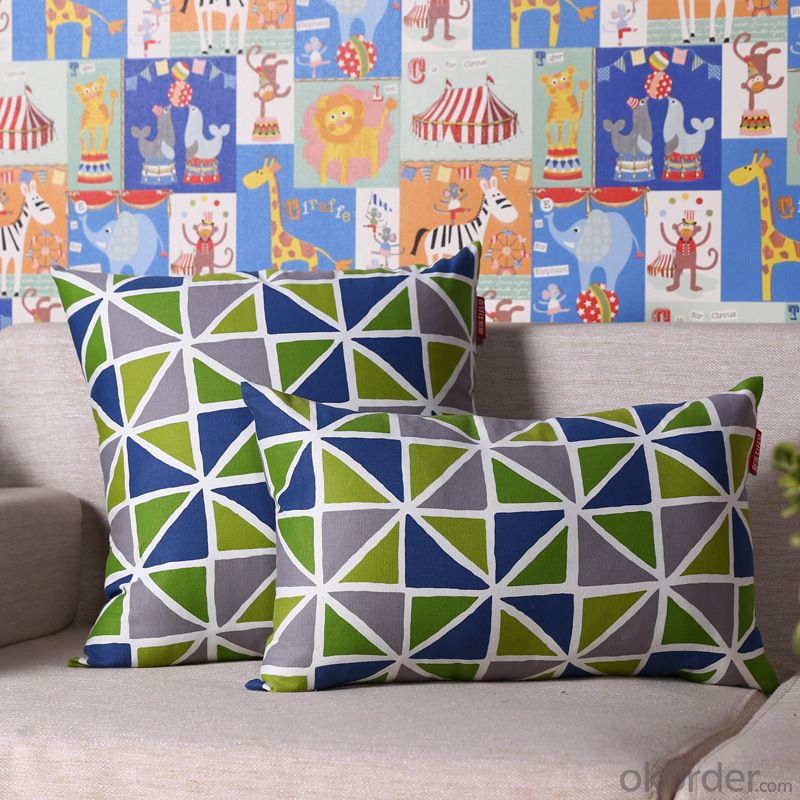 Hot Sale Pillow Cushion Cover with Digital Printed and Be Made of Cotton