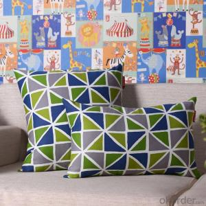 Fashion Pillow Cushion Cover with Digital Printing and Good Quality