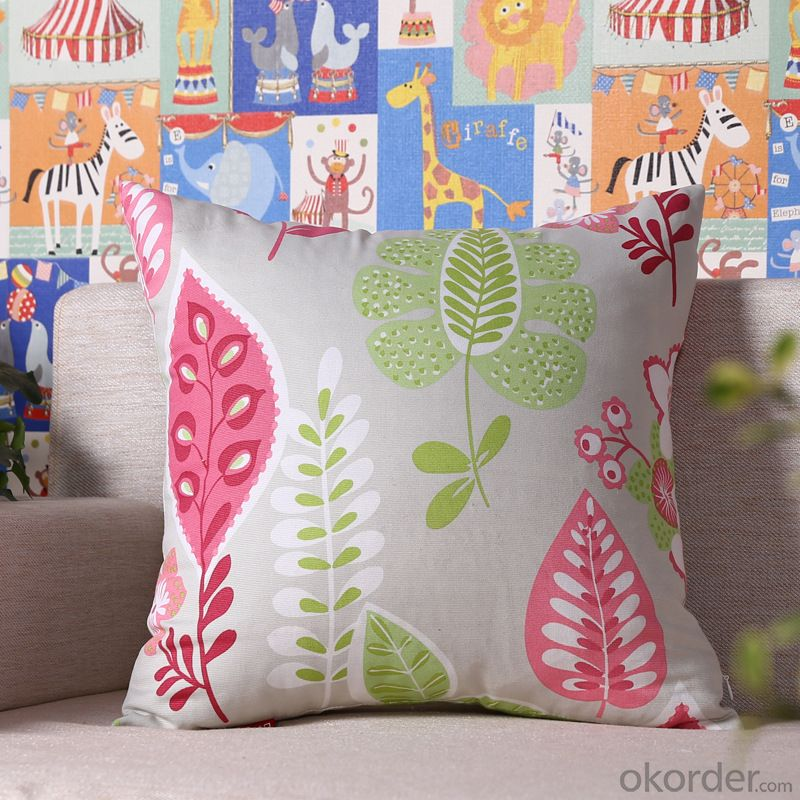 Modern Pillow Cushion Cover with Digital Printing and Cheap Price