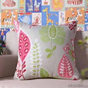 Hot Sale Pillow Cushion Cover with Digital Printing from China Manufacturer