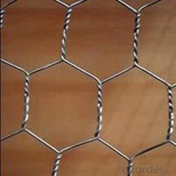 Hex Galvanized Wire Netting for Chicken and Farm