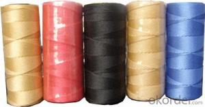 Different Color Dyed 100% Plastic Nylon Yarn