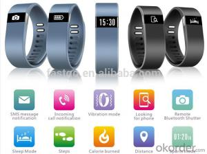 Bluetooth Smart Watch 2015/ Best Quality Smart Watch with APP for iphone