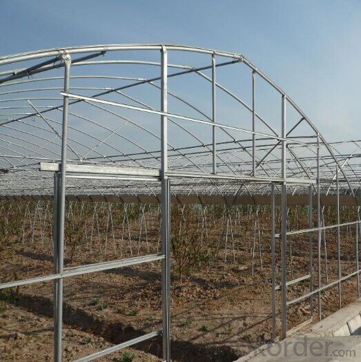 Agriculture Green House China Green House Manufacturer