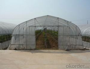 Venlo Glass Greenhouse for Agricultural Usuage