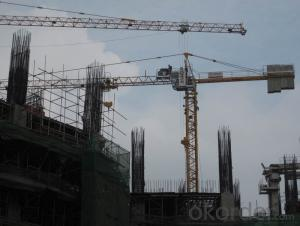 Tower Crane TC5610-F-40 for Construction