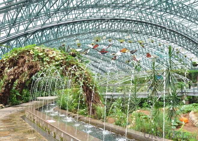 Agriculture Green House China Green House Manufacturer For Vegetable