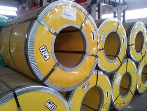 Pre-Painted Galvanized Steel Coil Construction Purposes