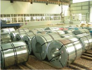 PI/Hot DIP Galvanized Steel Coils Regular 1000mm 1250mm