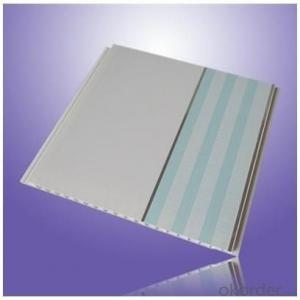 Plastic PVC Wall Panel Many Different Designs