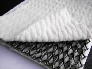 Geotextile Compounded to Dimple Waterproof Drainage Board Geocomposite