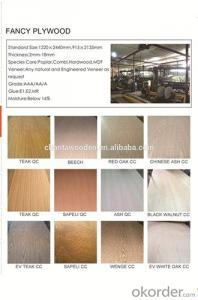 Brown Red and Black Color Film Faced Plywood