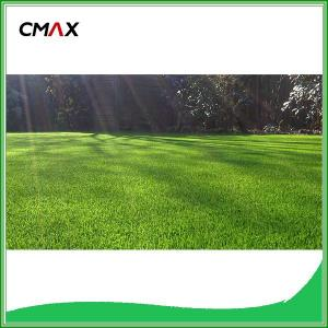 Cheap Artificial Grass Carpet for Football Field