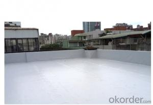 PVC Roofing and Waterproof Building Membrane