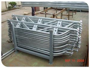 Hot Dip Galvanized Ringlock Scaffolding/Construction/Scaffold Q235 CNBM
