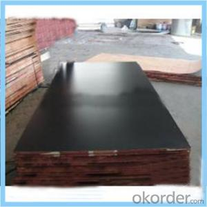 9mm & 12mm Black Film Faced Plywood for Nepal Market