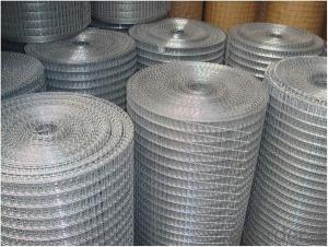 Welded Wire Mesh For make the home constrcution