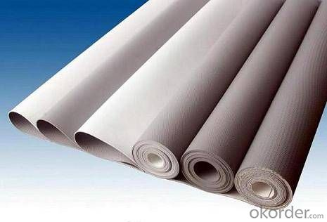 PVC Waterproof Membrane Nonwoven Polyester Reinforced