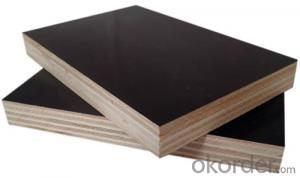 18mm Formwork Black Film Faced Plywood / Marine Plywood