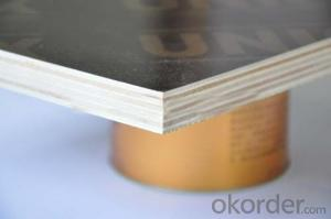 18mm Formwork Black Film Faced Plywood / Marine Plywood