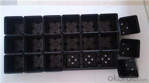Seed Tray Nursery Tray Plastic Tray with Cells Used for Greenhouse