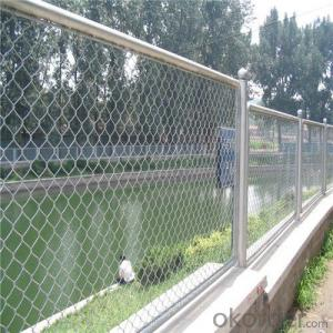 Chainlink Wire Mesh Galvanized or PVC Coated for Safety Fence and Factory Pirce