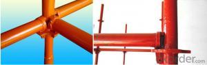 Cuplock Scaffolding System-Vertical Steel Standard CNBM