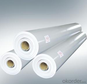 Polyvinyl Chloride (PVC) Waterproofing Membrane Filter