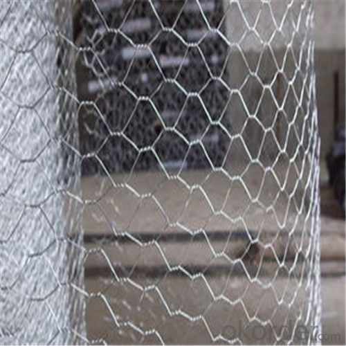 Galvanized Hexagonal Wire Netting / Chicken Fencing High Quality