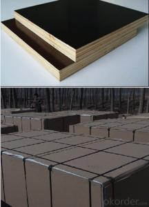 Anti Slip Brown Color Film Faced Plywood