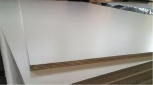 Finger Jointed Core Melamine Faced Plywood