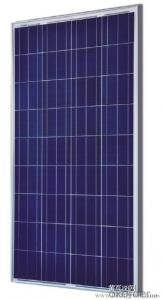 Polycrystalline Silicon Solar Panel Model CR095P-CR080P