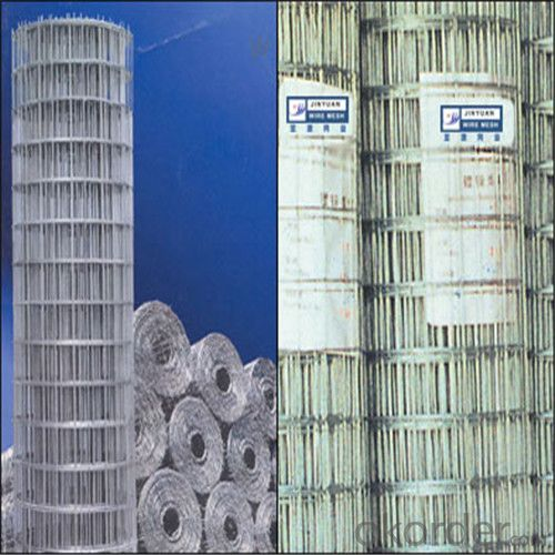 Galvanized Wire Mesh/Hot Dipped Electro Galvanized Good Quality