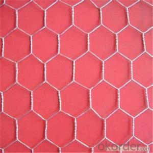 Galvanized Chicken Wire Mesh PVC Coated Wire Mesh with Good Qulaity