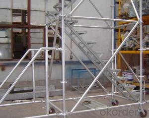 Ladder Access Trap Door for different Scaffolding CNBM