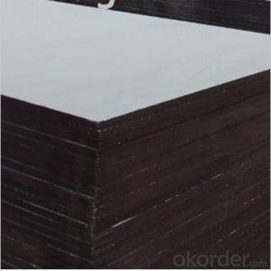 Poplar Material Film Faced Plywood for Outdoor Using