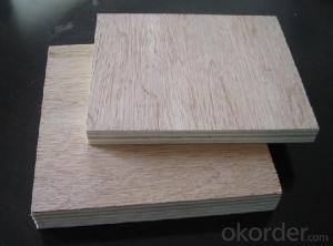 Bintangour Face and back Commercial Plywood Furniture Use