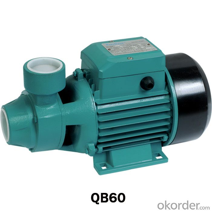 QB Series Peripheral Pump with Brass Impellers
