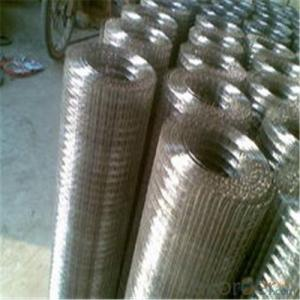 Galvnized Wire Mesh/Hot Dipped and Electro Galvanized with Good Quality .