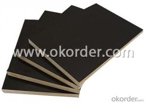 Finger Jointed Core Black Film Faced Plywood