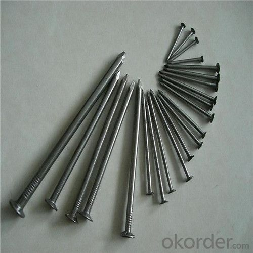 Common Iron Nail Hot Fasteners with High Quality Factory Direct Price