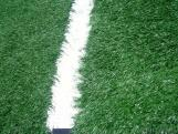 Artificial Grass Turf for Sports Use from China