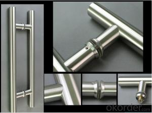 Stainless Steel Glass Door Handle for Bathroom/Shower Room DH107