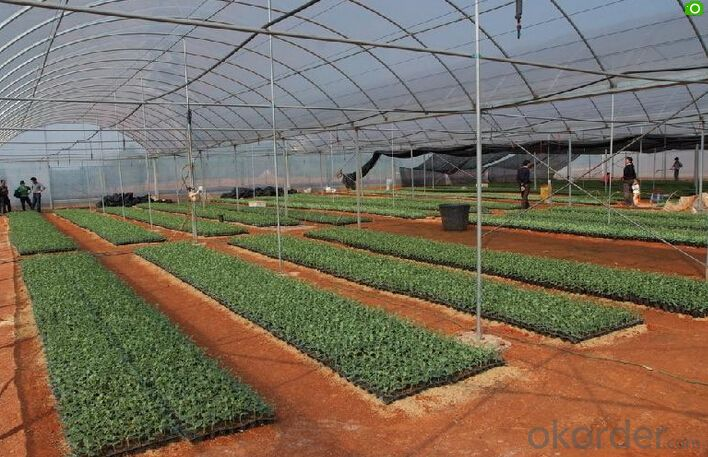 Thermal Screens HDPE sunshade net double color for greenhouse