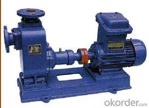 Electric Driven Horizontal Self Priming Water Pump