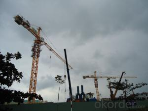 8T Max Loading Capacity Tower crane TC5516
